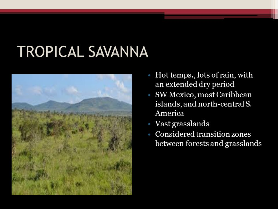 TROPICAL SAVANNA Hot temps., lots of rain, with an extended dry period