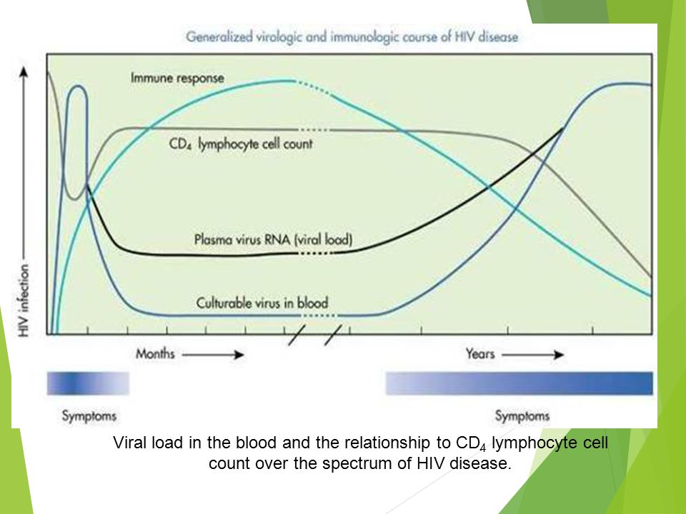 cd4 and viral load relationship tips