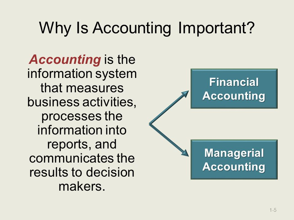 Accounting and the Business Environment - ppt download