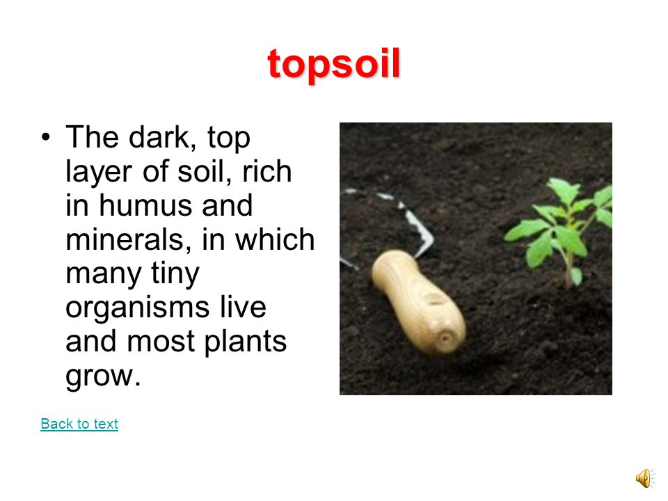 What is soil made of ppt video online download for Rich soil definition