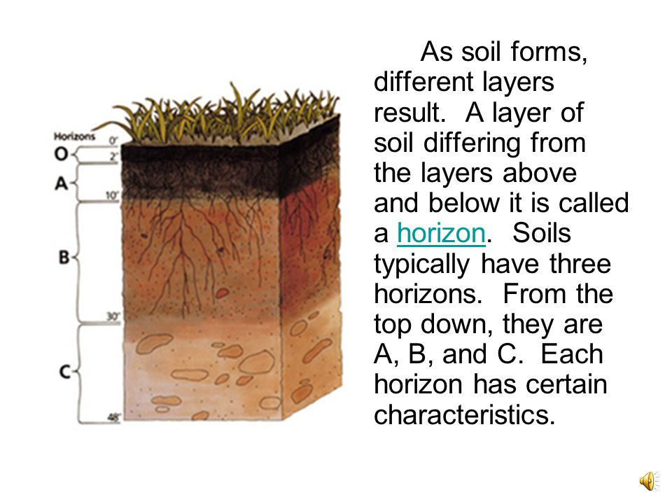 What is soil made of ppt video online download for What are the different layers of soil