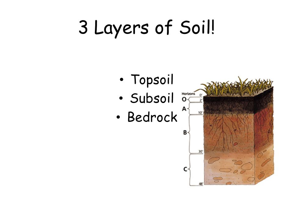 Soil vocabulary ppt video online download for 6 layers of soil