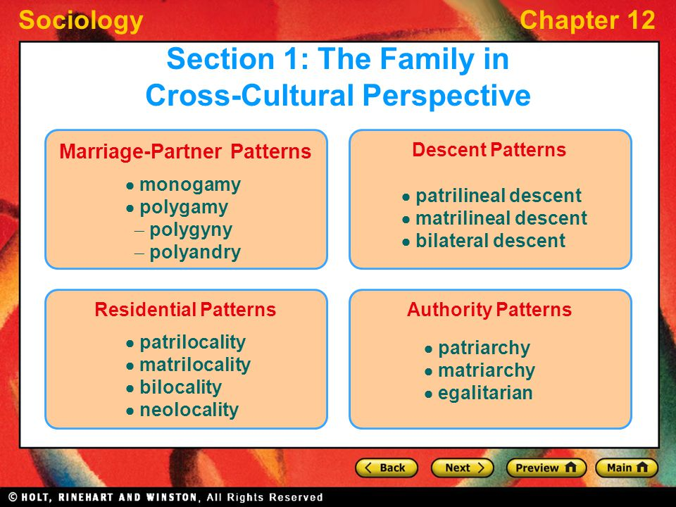 an overview of the cross cultural perspective of polygyny