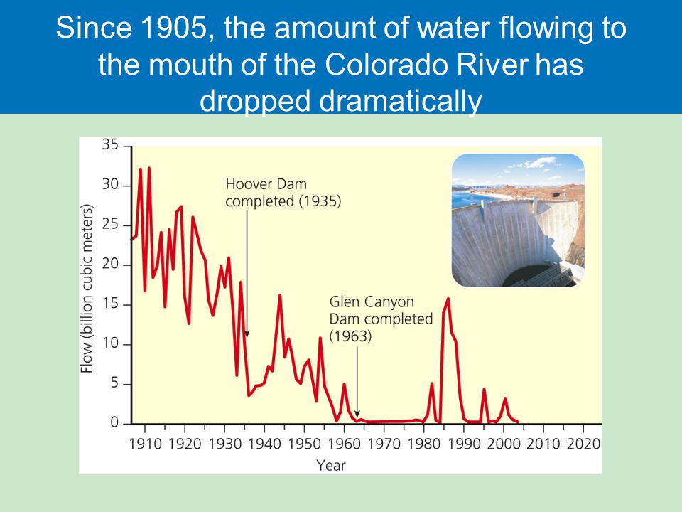 Since 1905, the amount of water flowing to the mouth of the Colorado River has dropped dramatically