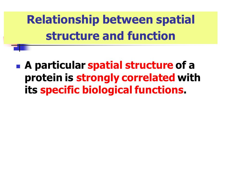 relationship between structure and function of fibrous proteins