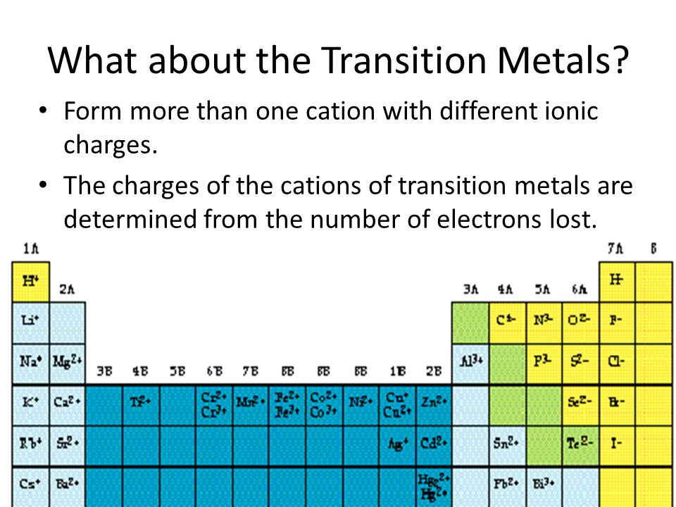What about the Transition Metals