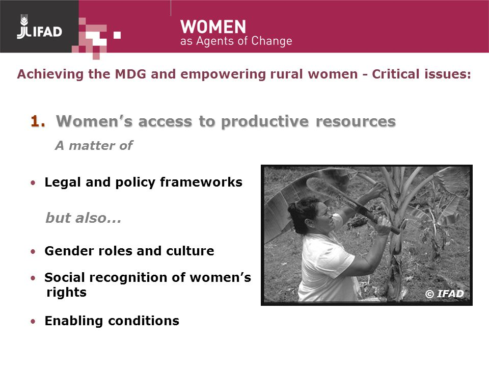 Achieving the MDG and empowering rural women - Critical issues:
