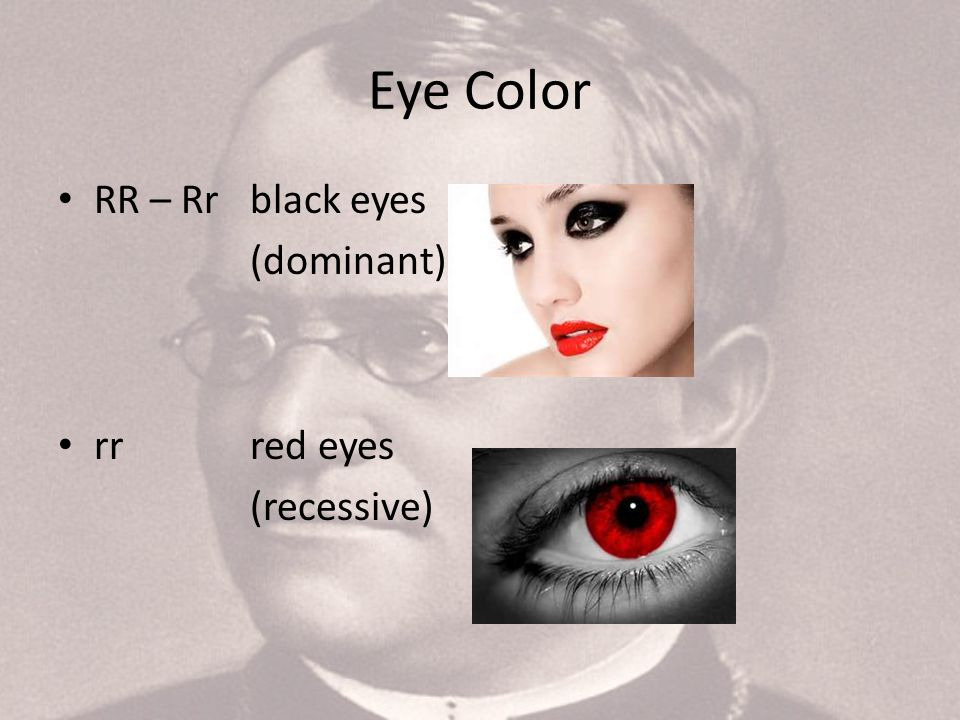 3 Eye Color RR – Rr black eyes (dominant) rr red eyes (recessive)