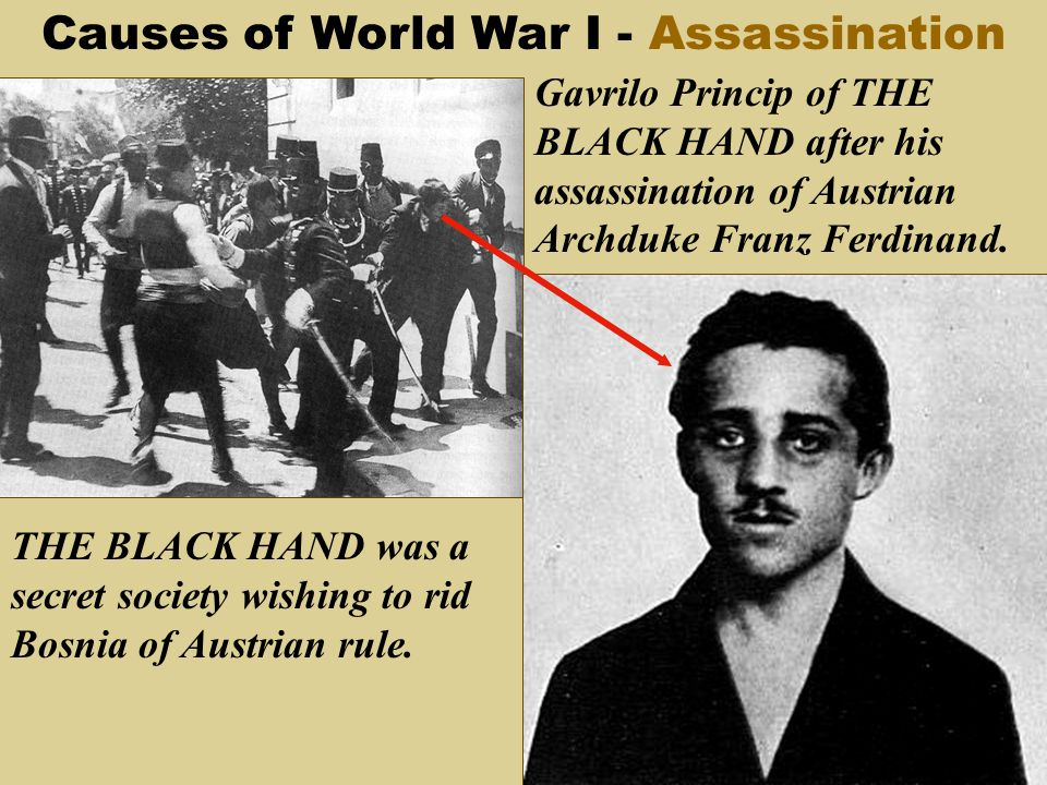 the assassination of archduke franz ferdinand as the main cause of world war i Karl habsburg-lothringen says major powers were ready for war anyway when heir to habsburg empire was assassinated a descendant of the archduke franz ferdinand, whose assassination in sarajevo triggered the first world war, has said that his family should not be blamed for causing the war that.