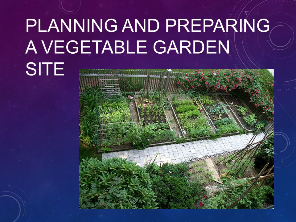 1 Planning And Preparing A Vegetable Garden Site