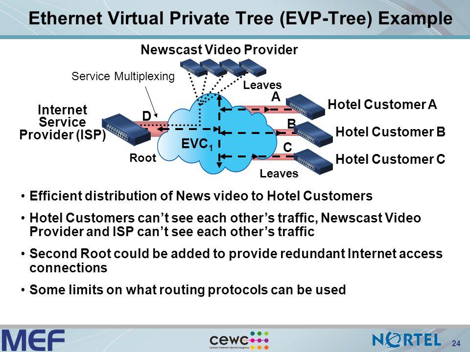 virtual internet service provider pdf