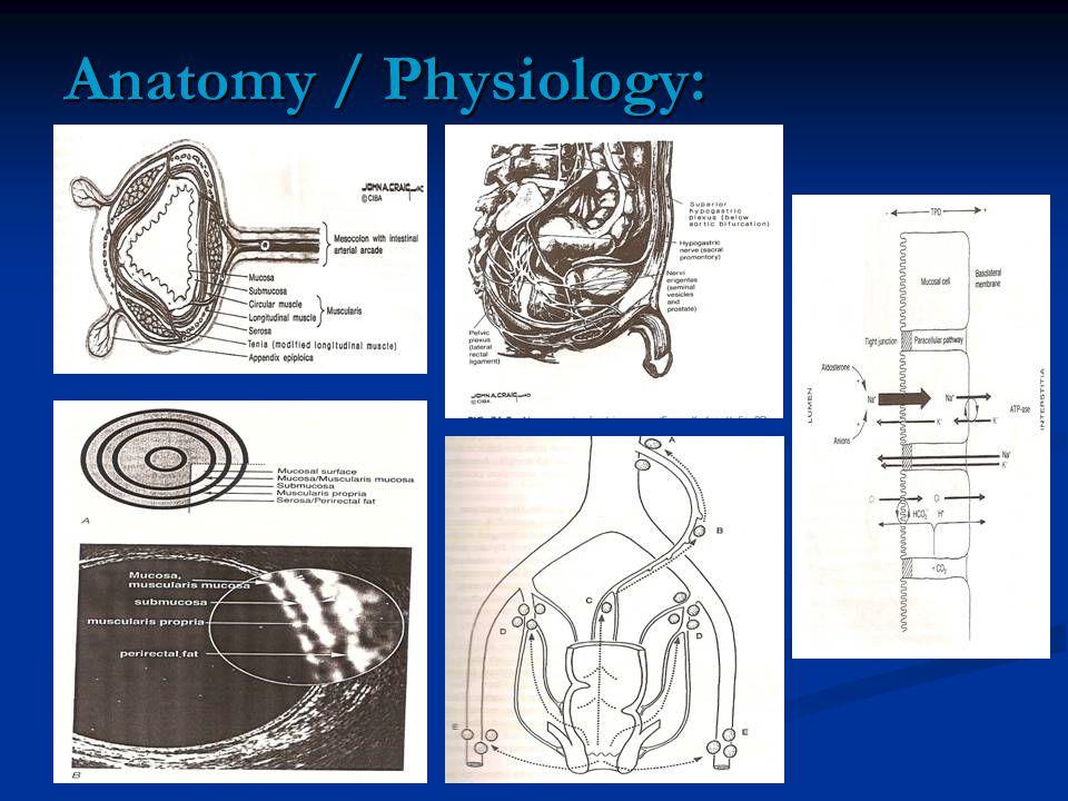 Anatomy / Physiology: