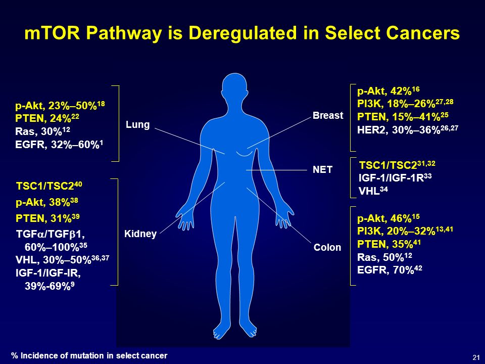 mTOR Pathway is Deregulated in Select Cancers