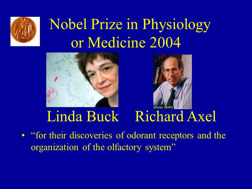 Nobel Prize in Physiology or Medicine 2004
