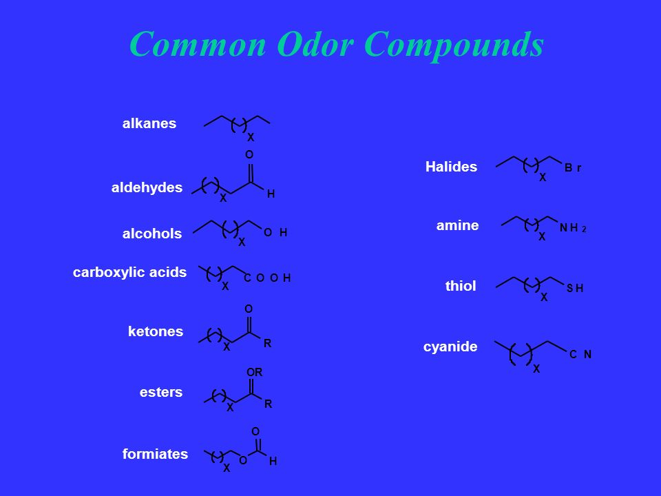 Common Odor Compounds alkanes Halides aldehydes amine alcohols