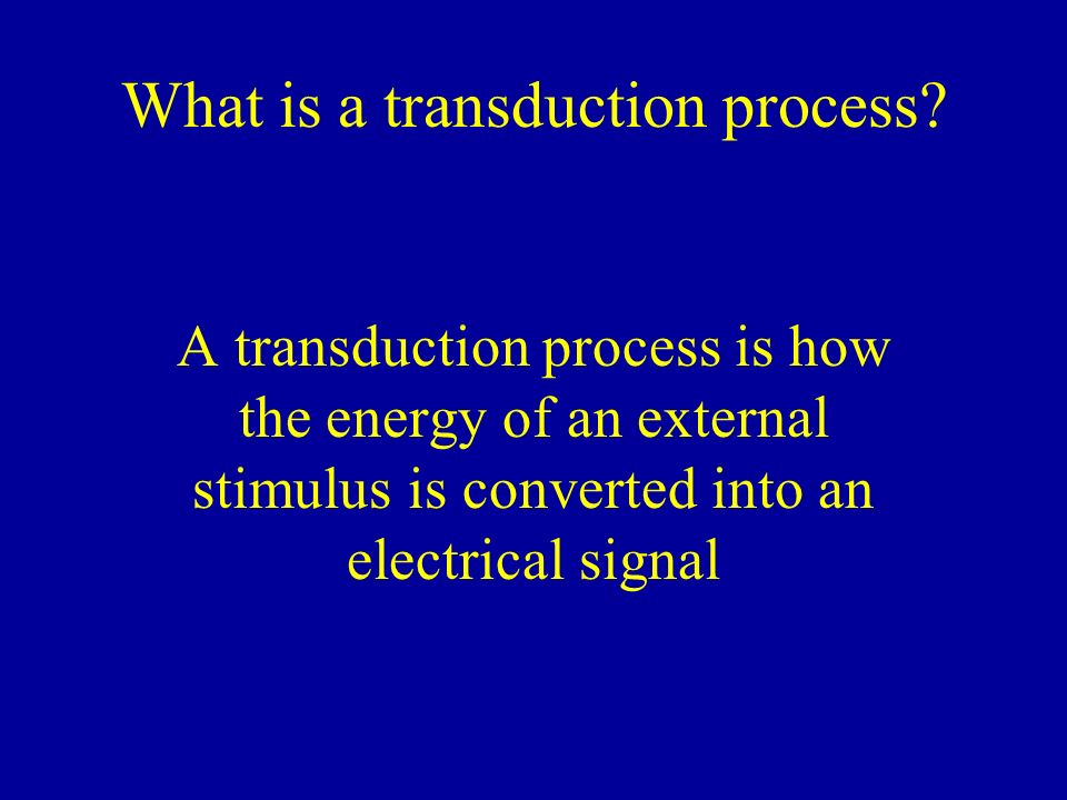 What is a transduction process