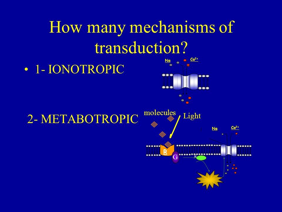 How many mechanisms of transduction