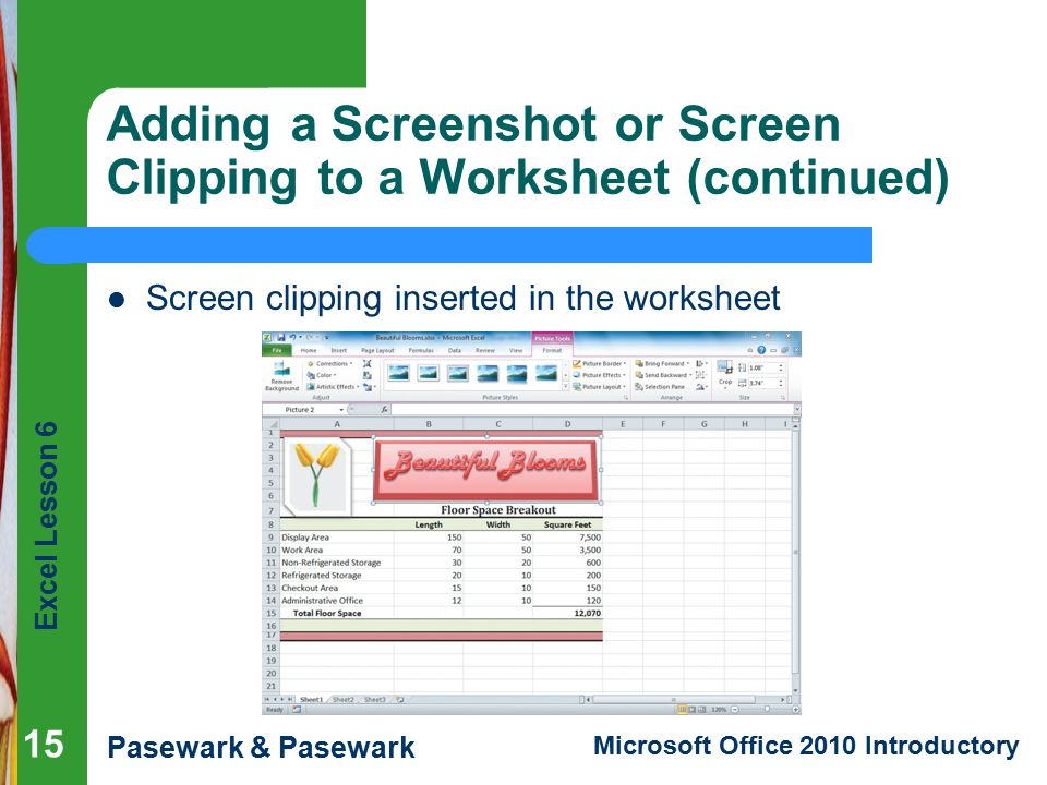 Adding a Screenshot or Screen Clipping to a Worksheet (continued)