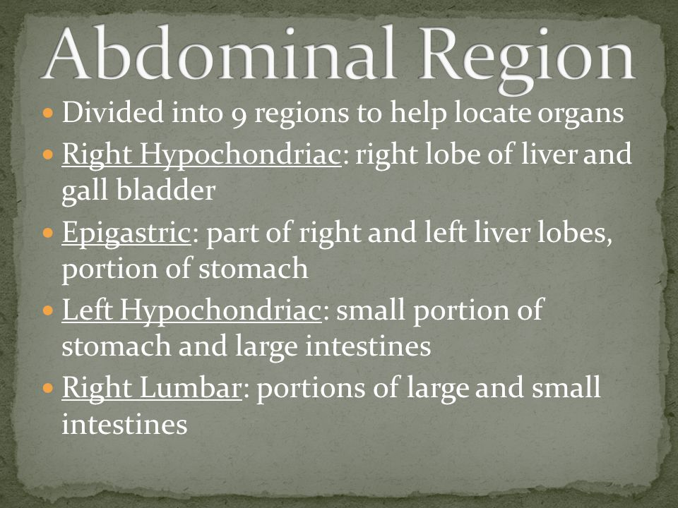 Abdominal Region Divided into 9 regions to help locate organs