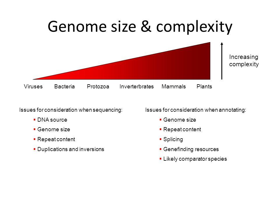 A F A D F B A E E C E in addition Fons Micro in addition Beebots Race Track moreover Ahr Cdovl D Dy Saxzlc Npzw Jzs Jb Vaw Hz Vzl Kvmdawlza Ns Njqvb Jpz Luywwvymf Lwxvbmdldml Es Xmza Mjauanbn as well Genome Size    plexity. on size sequencing