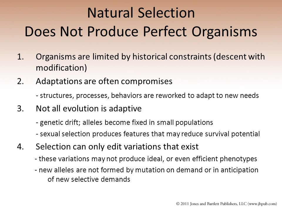 Natural Selection Does Not Produce Perfect Organisms