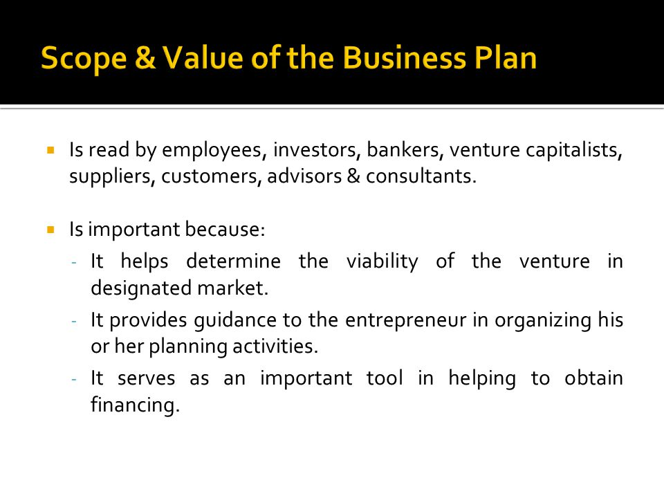 Scope & Value of the Business Plan