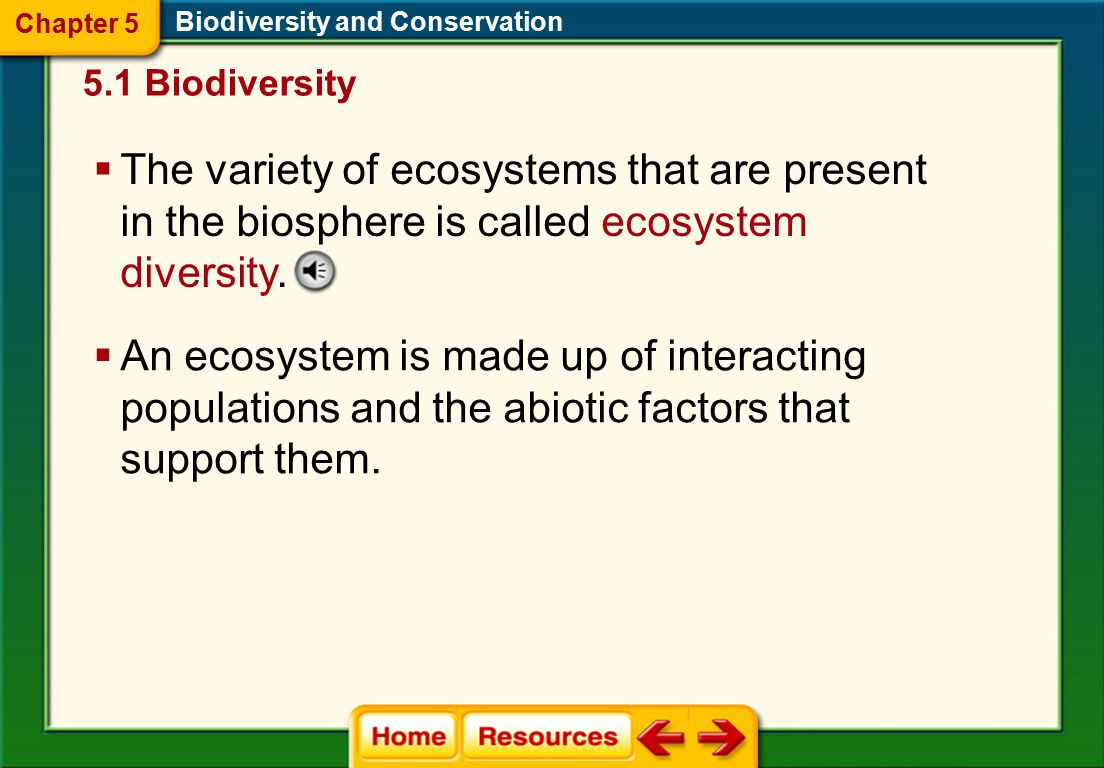 the importance of conserving biodiversity Learn everything you wanted to know about protecting biodiversity find out the importance and essentiality for protection of biodiversity right here.