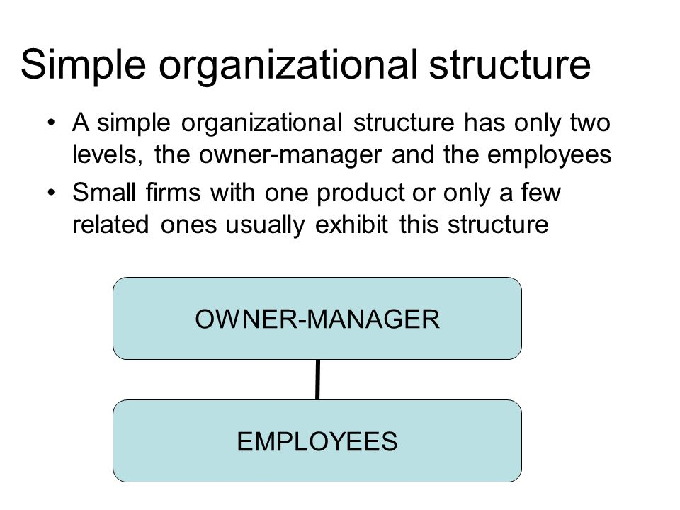 simple organization structure