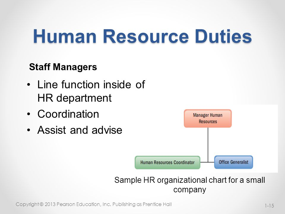 Beautiful Human Resources Organizational Chart Contemporary - Best