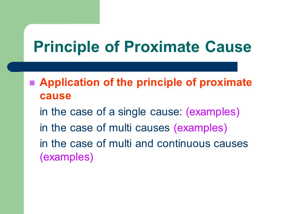 Principle of Proximate Cause