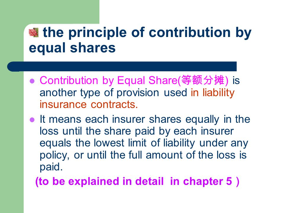 the principle of contribution by equal shares