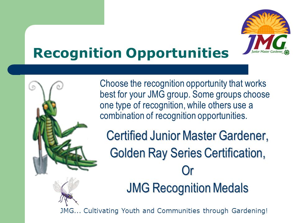 Recognition Opportunities