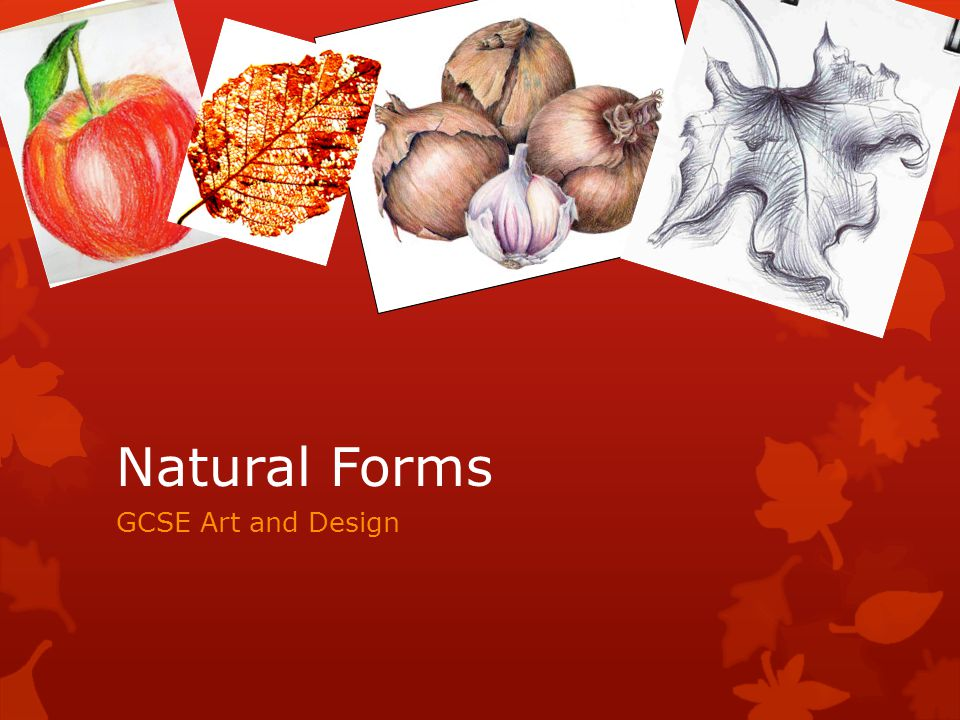 Form In Art And Design : Natural forms gcse art and design ppt video online download