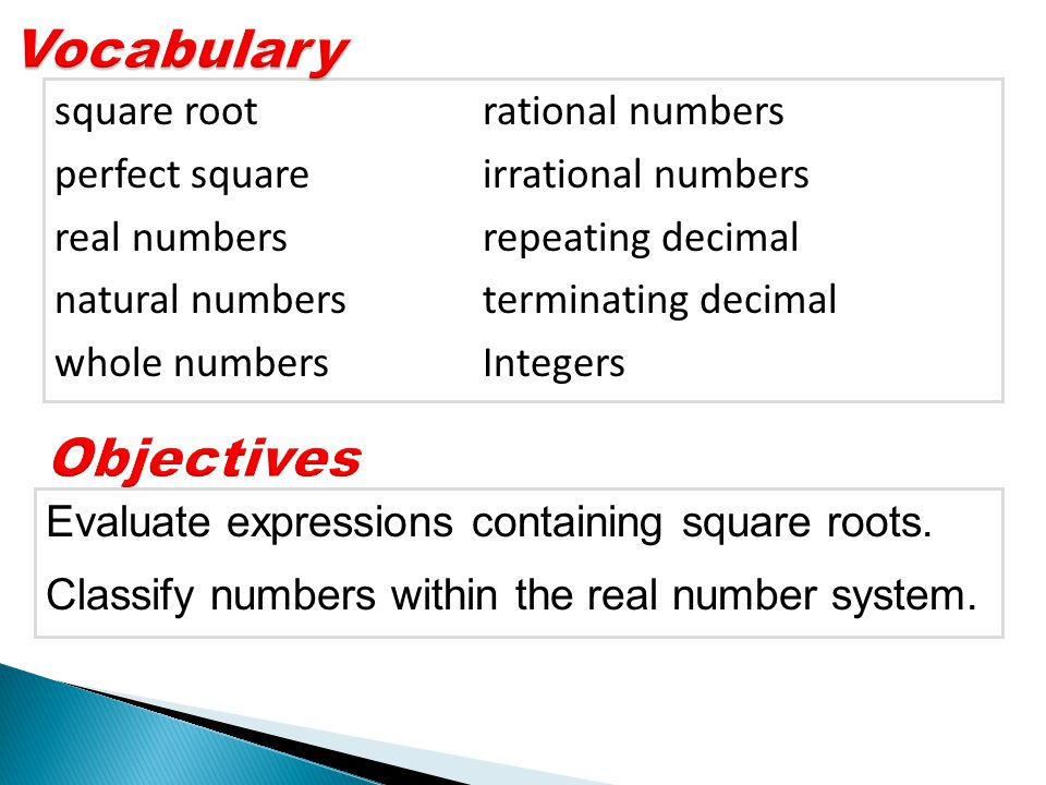 Vocabulary Objectives square root rational numbers