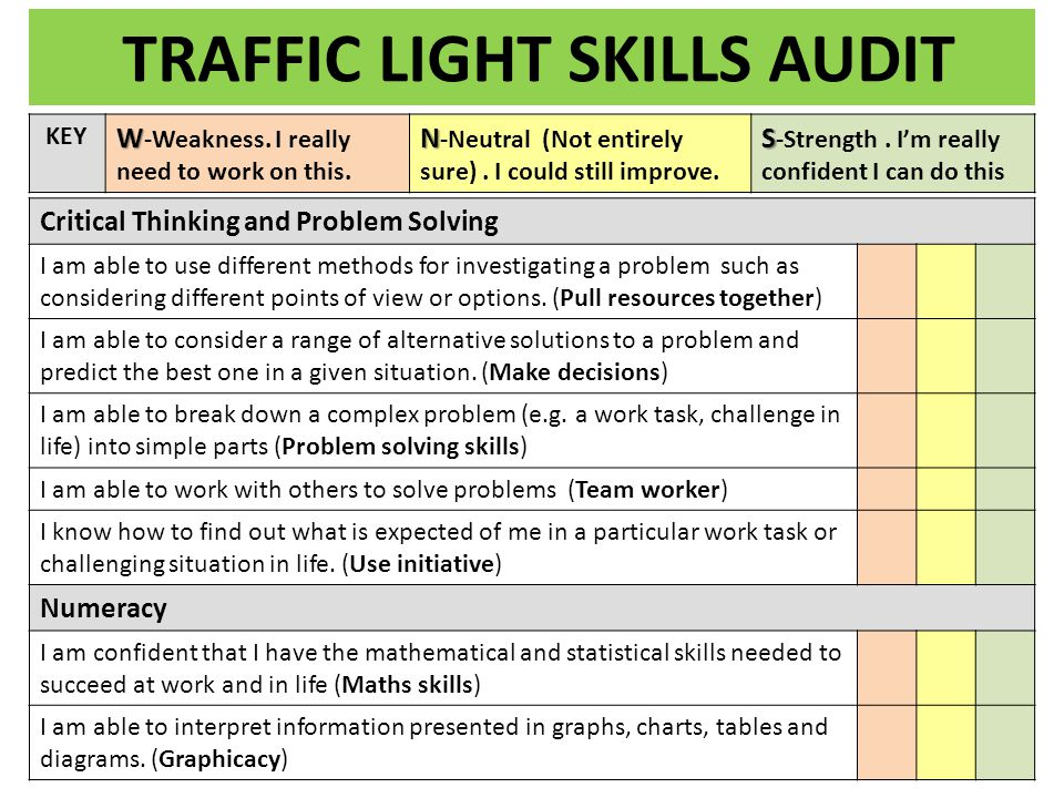 TRAFFIC LIGHT SKILLS AUDIT