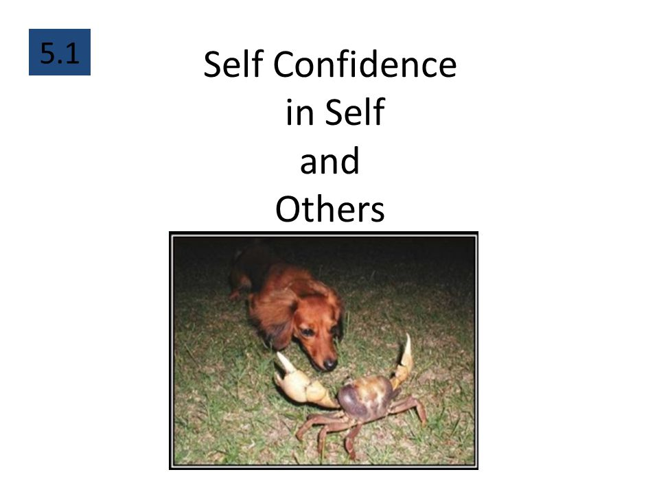 Self Confidence in Self and Others