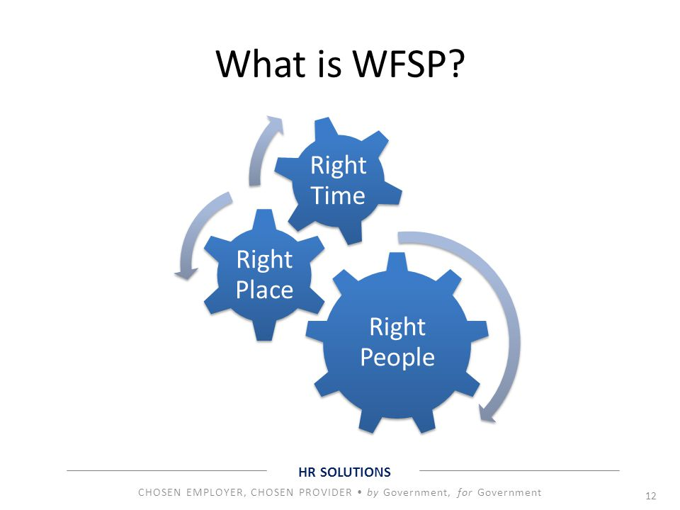 What is WFSP Right People Right Place Right Time