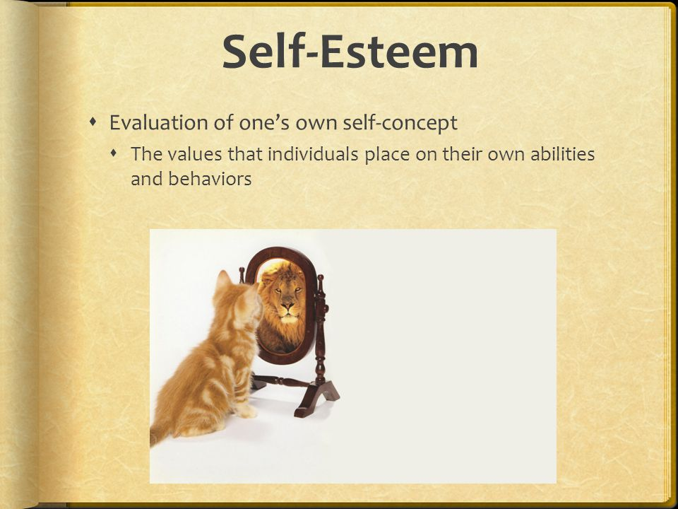 Self-Esteem Evaluation of one's own self-concept