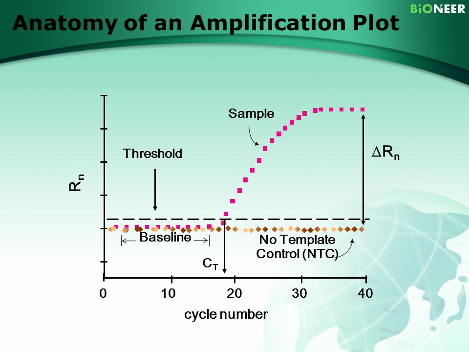 Principle of real time qpcr ppt download 78 anatomy of an amplification plot sample threshold rn rn baseline no template control pronofoot35fo Choice Image