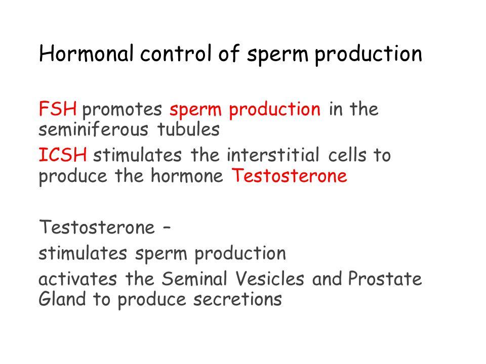 Sperm - Wikipedia