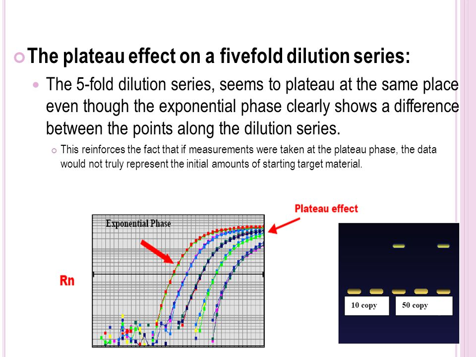 how to write two fold dilution