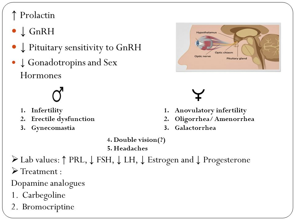↓ Pituitary sensitivity to GnRH