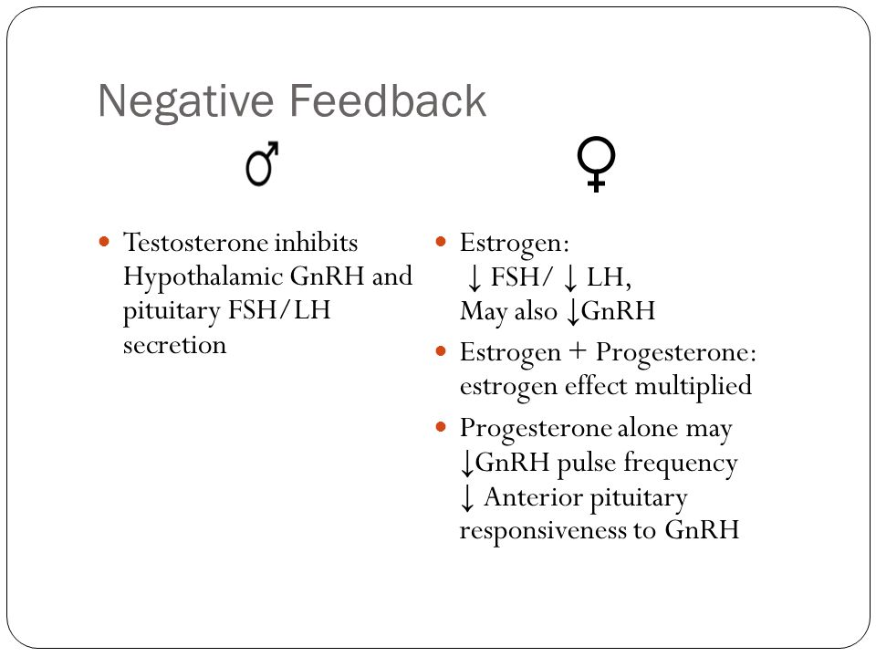Negative Feedback Testosterone inhibits Hypothalamic GnRH and pituitary FSH/LH secretion. Estrogen: ↓ FSH/ ↓ LH, May also ↓GnRH.