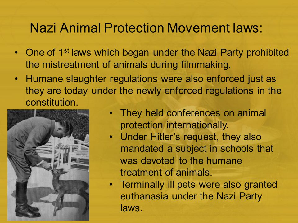 Animal Rights Protection In Germany Ppt Video Online