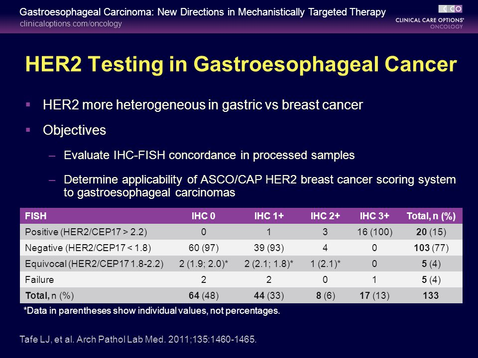 Treatment of her2 positive gastroesophageal carcinoma for Fish test for cancer