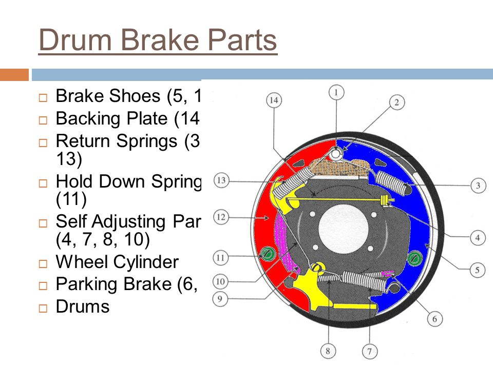 Drum Brake Parts Brake Shoes (5, 12) Backing Plate (14)
