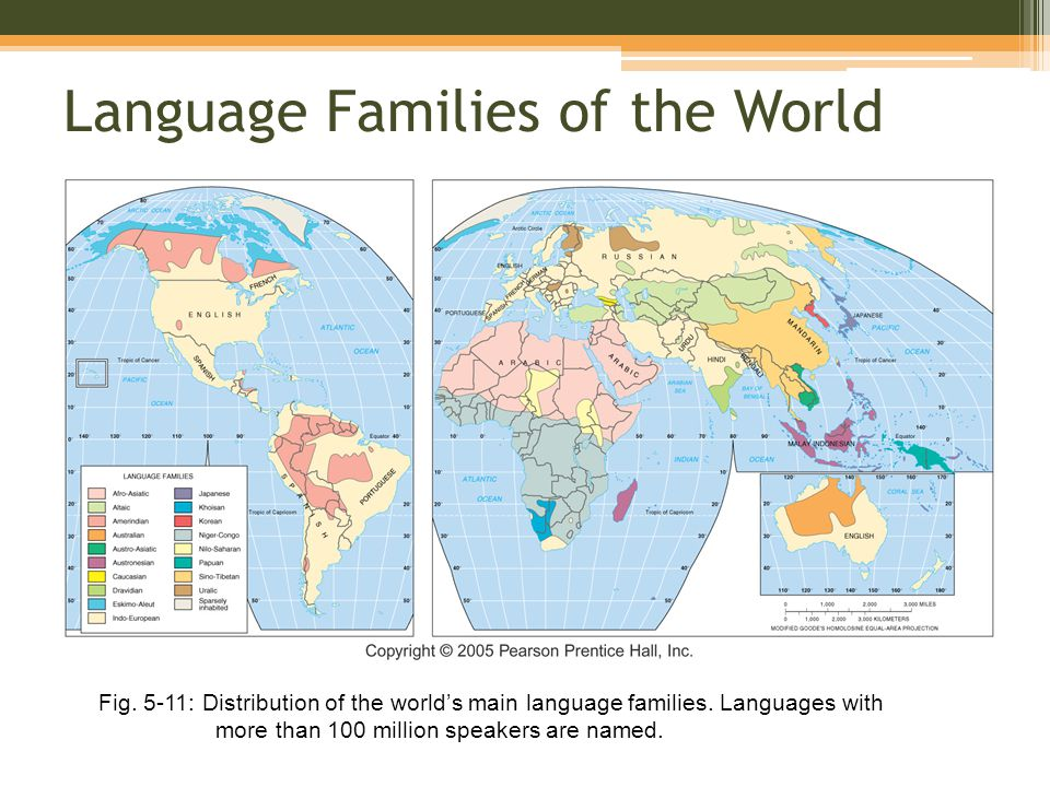Chapter Language Ppt Video Online Download - 5 main languages of the world