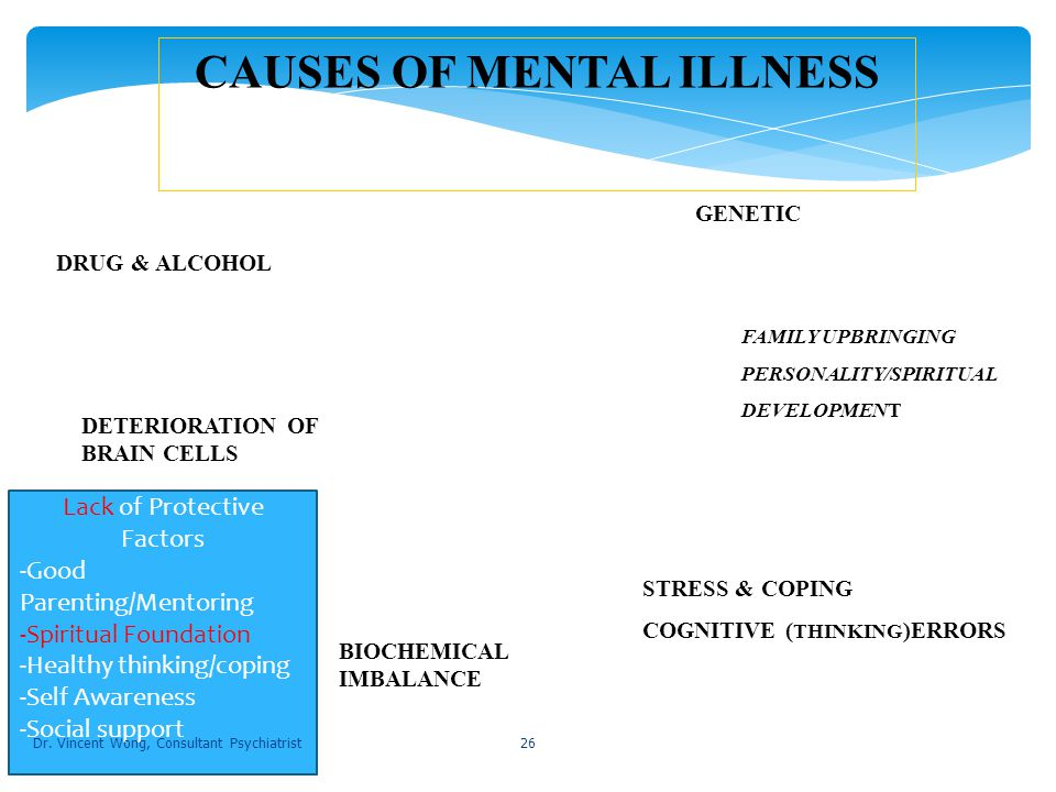 what are the causes of mental illness pdf