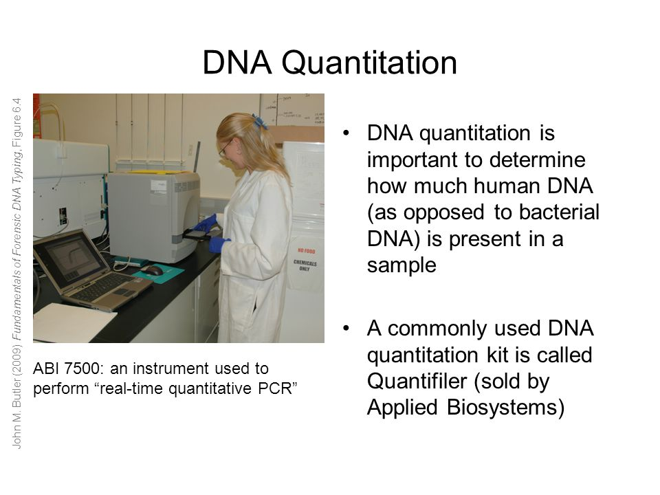 human dna typing by pcr The sensitivity of forensic dna typing techniques can cause problems   contamination decontamination dna polymerase chain reaction short  tandem  were analyzed for the presence of contaminating human dna.