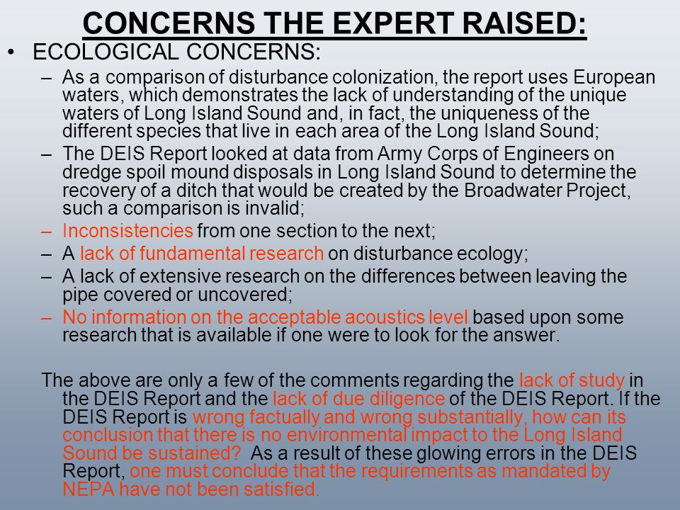 CONCERNS THE EXPERT RAISED: